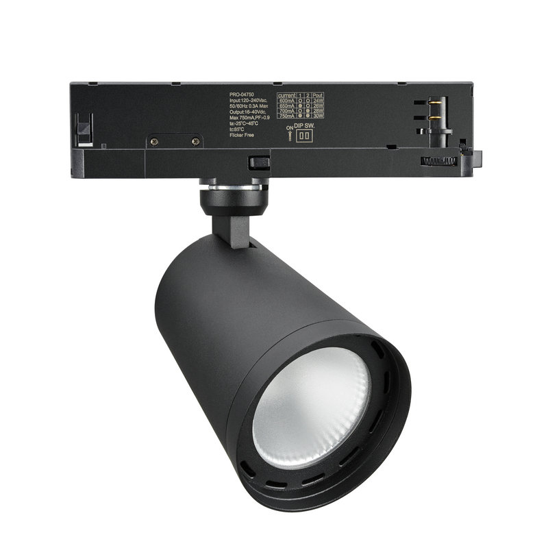 In-track-driver integrated LED spotlight
