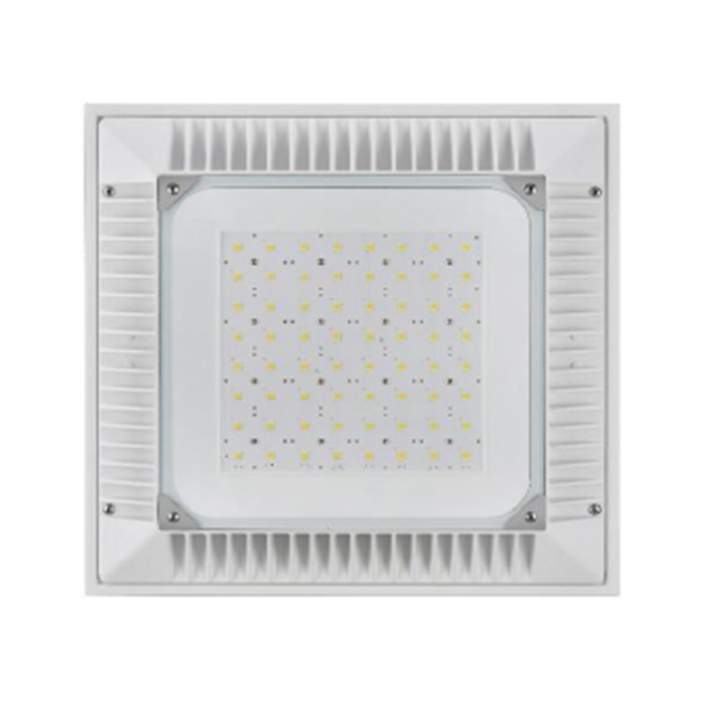 Outdoor LED Canopy high/low bay light